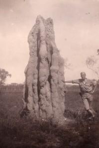 Gigantic termite mound in Australia (copyright 2016 T.B. Rhodes and A.B. Kautz)