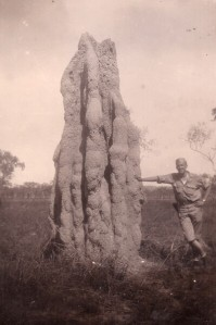 Gigantic termite mound in Australia (copyright 2016 T.B. Rhodes and A.B. Kautz)